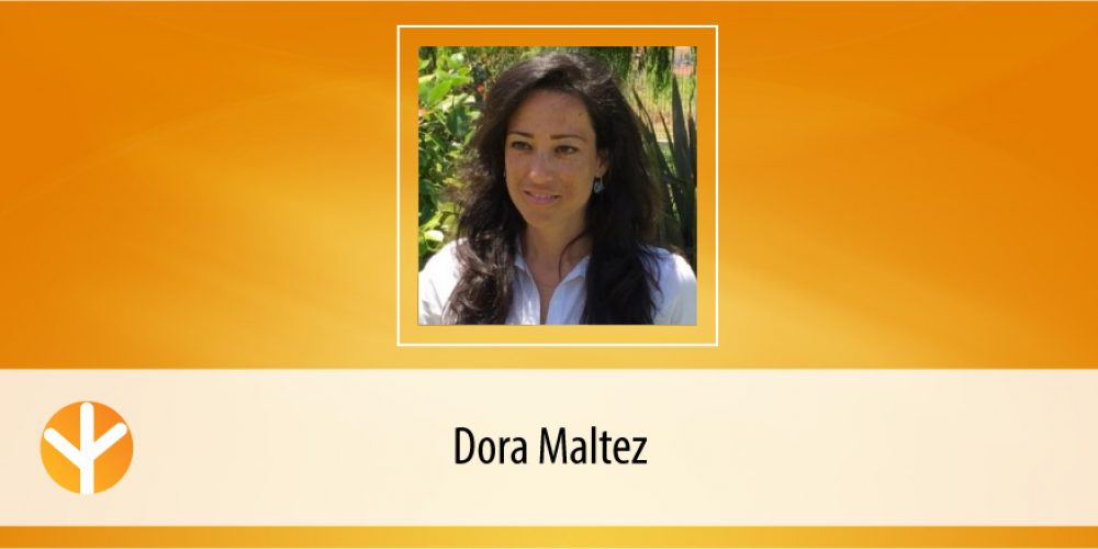 Candidata do Dia: Dora Maltez