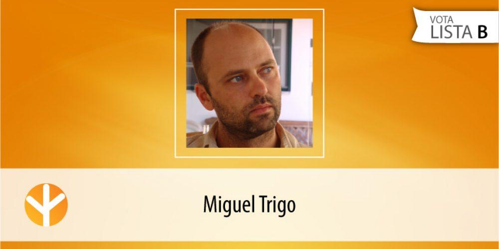 Candidato do Dia: Miguel Trigo